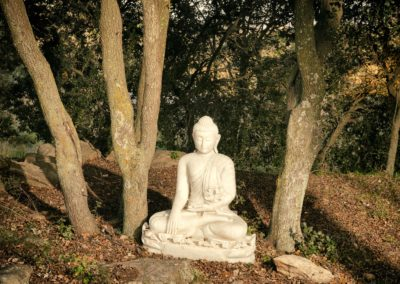 mediter en pleine nature